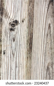 cross section of wood, with natural pattern