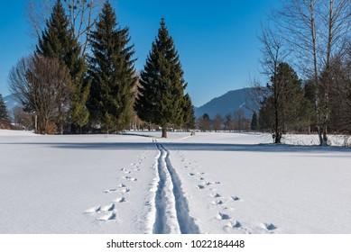 Cross-country ski trail in Austria