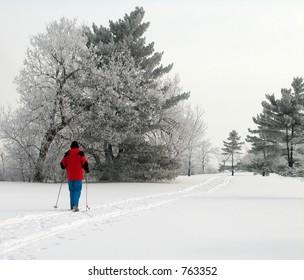Cross-country skiing in Ottawa, Ontario