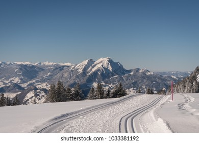 Cross-country skiing trail in winter landscape in the Swiss Alps on a sunny day with lots of fresh snow and snow covered mountain peaks and forest