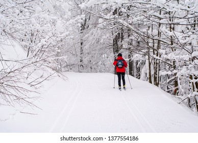 Cross-country skiing woman at Jeseniky Mountains