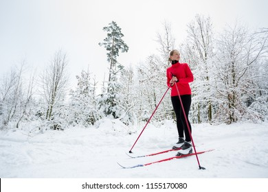 Cross-country skiing: young woman cross-country skiing on a winter day, taking a break to apreciate the snowy forest environment (color toned image)