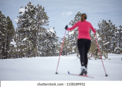 Cross-country skiing: young woman cross-country skiing on a winter day (forest in focus, skier left out of focus)