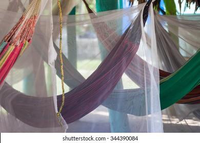 Crossed hammocks in a paradise park
