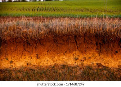 Cross-section in the soil. Texture of brown agricultural soil. Texture of land dried up by drought. Soil texture background.