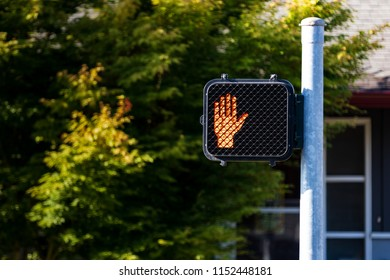 Crosswalk hand symbol sign on a post with trees in the distance