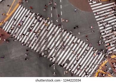 Crosswalk. People walk along the pedestrian crossing