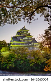 Crow Castle or Ujo Castle in Okayama City on the Asahi River in Japan With Traditional Maple Branches in The Frame. Vertical Image