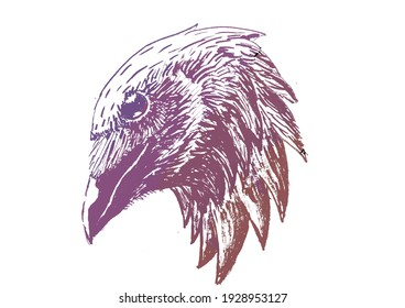 crow ink editted gradation color
