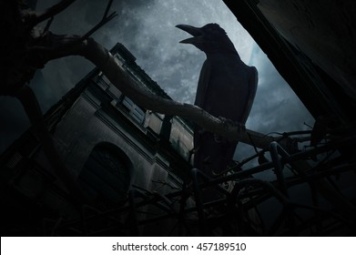Crow sit on dead tree trunk and croak over fence, old grunge castle, moon and cloudy sky, Mysterious background, Halloween concept