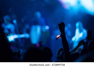 crowd at concert.