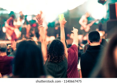 crowd at concert - music festival