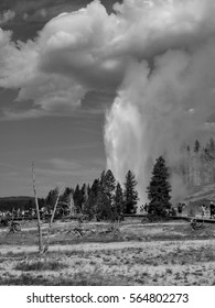 A crowd gathers on a walkway as a grand geyser erupts and shoots boiling hot water into the air with magnificent power at Yellowstone National Park on a summer day.