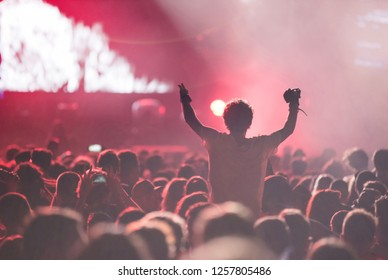 Crowd of people partying at a music festival