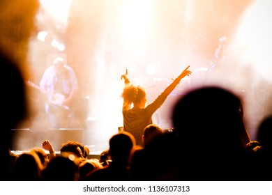 crowd with raised hands having fun at concert - music festival