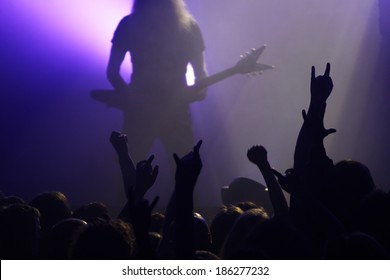 Crowd rocking on the concert