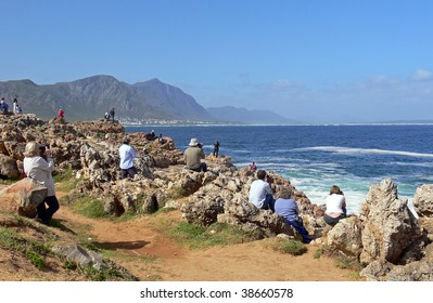 Crowd whale watching in Hermanus, South Africa