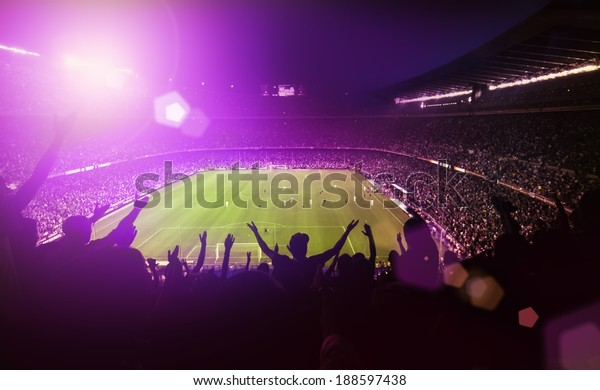 Crowded soccer stadium wall mural