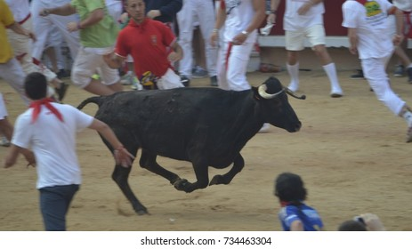 Crowds of excited festival goers run from bulls in the Plaza de Toros during the San Fermin fiesta, Pamplona, Spain. July 10, 2013