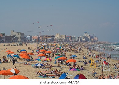 crowds on the beach