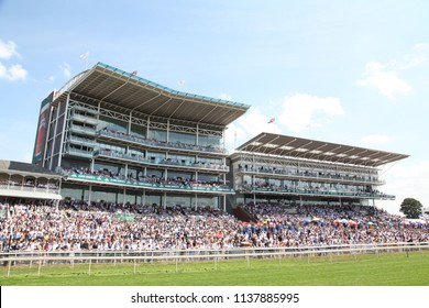 The crowds pack in to the Grandstands at York Races on John Smiths Cup Day : The Knavesmire, York Racecourse, Nth Yorkshire, UK : 14 July 2018 : Pic Mick Atkins