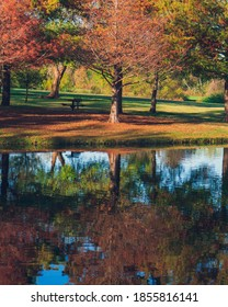 Crowley Park Richardson Texas, Tree Reflection in Water at Texas Park