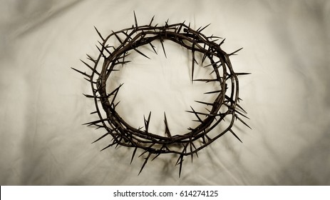 A crown made of real thorns is centered on a textured, shadowy white fabric background. Great for Easter, Palm Sunday, or anytime!