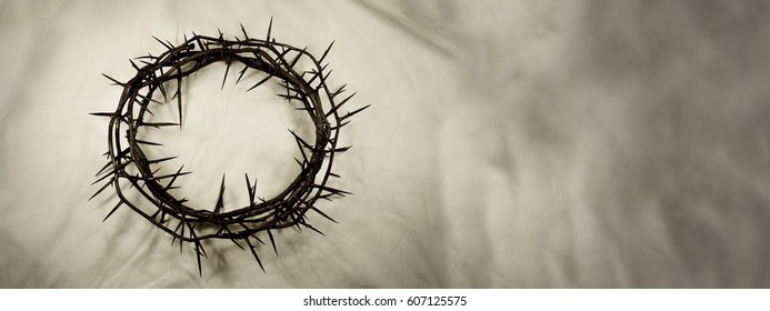 A crown made of real thorns is set to the left on a textured, shadowy white fabric background. Great for Easter, Palm Sunday, or anytime!