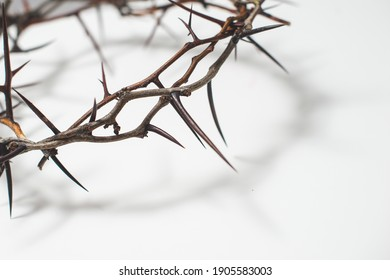 Crown of thorns Jesus Christ isolaten on white - Shutterstock ID 1905583003