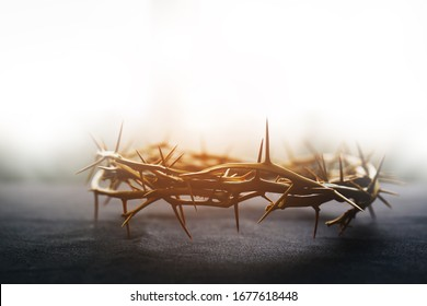 the crown of thorns of Jesus on  black background against  window light with copy space, can be used for Christian background, Easter concept - Shutterstock ID 1677618448