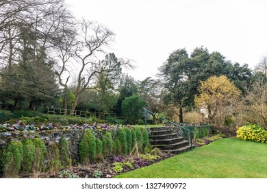 Croydon, United Kingdom - March 03, 2019:  Wettern Tree Garden in Sanderstead, Purley Oaks Road. A unique collection of trees and shrubs  established by Eric Wettern