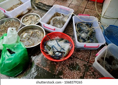 A crude filtration system to keep seafood fresh in a seafood market in Vietnam.