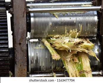 A crude mechanical devise to crush and extract juice from sugar cane. Bagasse after the extraction.