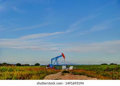 Crude oil pump jack in a field in Alberta