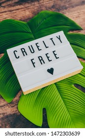 cruelty free message on lightbox with leaf and wood texture background, concept of vegan products and ethics