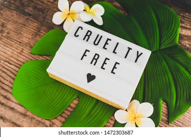 cruelty free message on lightbox with tropical settings on banana leaf and with plumeria flowers, concept of vegan products and ethics