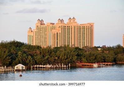 Cruise Miami