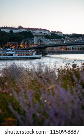 Cruise on Danube in Budapest
