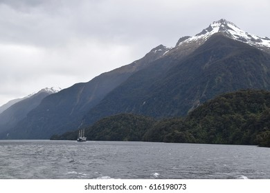 The cruise takes visitors through the fiord to the open Tasman Sea.