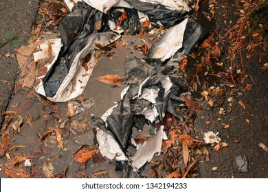 crumpled black and white plastic bag lies in a puddle on the pavement among the orange autumn leaves. cellophane rubbish on the street with selective focus, toned, environmental pollution background