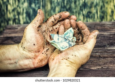 Crumpled dollars lie in the dirty in the hand