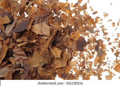 Crushed and dried tobacco leaves as background, close-up