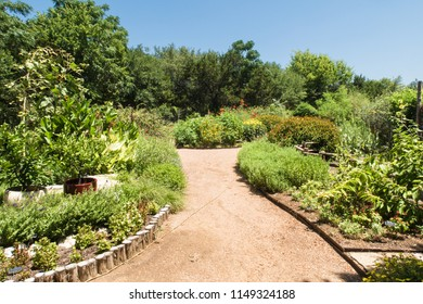 a crushed granite pathway through a garden