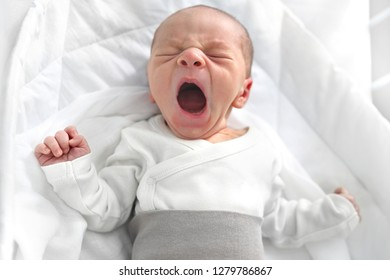 Crying newborn baby. First days in the world