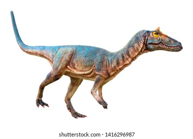 Cryolophosaurus is a carnivore genus of large theropods known from only a single species Cryolophosaurus ellioti, lived in the Jurassic period, isolated on white background with clipping path