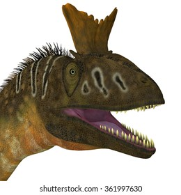 Cryolophosaurus Head View - Cryolophosaurus was a large theropod carnivorous dinosaur that lived in Antarctica during the Jurassic Period.
