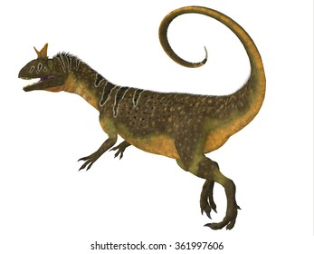 Cryolophosaurus Tail - Cryolophosaurus was a large theropod carnivorous dinosaur that lived in Antarctica during the Jurassic Period.