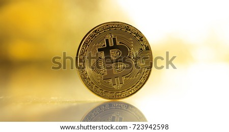 Cryptocurrency concept. Single golden bitcoin and reflection