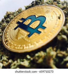 Cryptocurrency physical gold bitcoin coin with a blue sign on cannabis