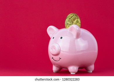Cryptocurrency in to piggy bank. cryptocurrency investment concept with raspberry color background